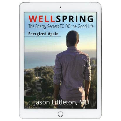 WELLSPRING – ENERGIZED AGAIN, 2ND EDITION (E-book) $12.45