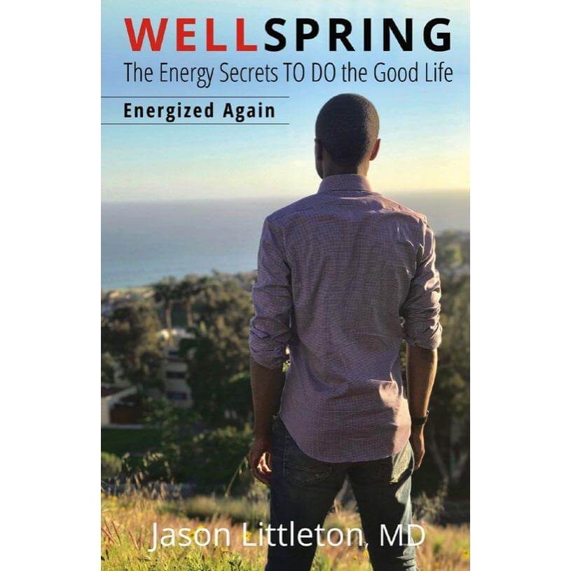 WELLSPRING- ENERGIZED AGAIN, 2ND EDITION (Paper back) $19.97